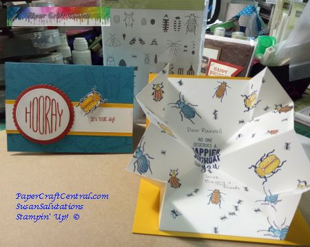 Special Card Fold 'Beetles and Bugs' Explosion Card