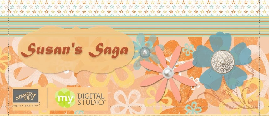 Susan's Saga Blog